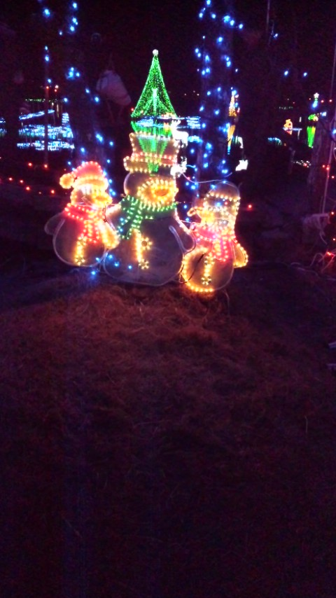 ★☆Merry Christmas☆★
