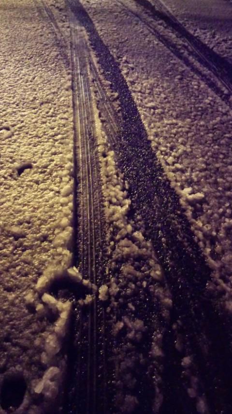 今年最初の雪の日